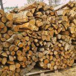 Acacia bois chauffage