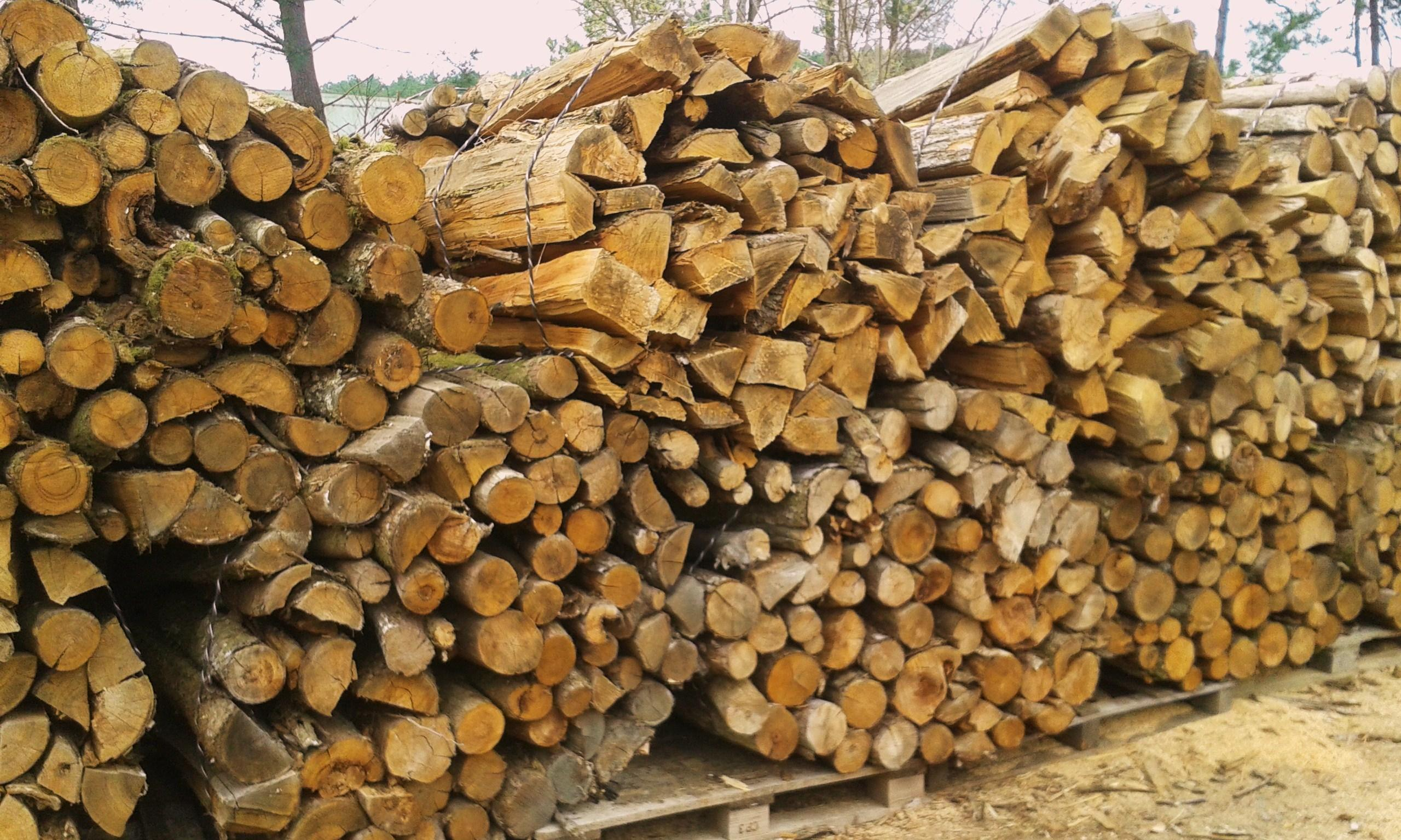 Acacia bois chauffage energies naturels - Acacia bois de chauffage ...